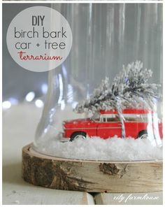 This holiday season I am going all out in my boy's playroom. This adorable + easy DIY Birch Bark Car + Tree Terrarium is a sneak peek of what is to come.