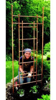trellis - copper pipe for climbers in center trough