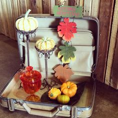 We have unpacked all of our fall inspired #decor #theclutterhouse #fall #autumn #shopphx #home