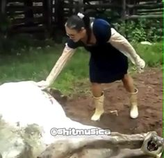 Top Funny Videos, Crazy Funny Videos, Funny Videos For Kids, Funny Video Memes, Crazy Funny Memes, Funny Jockes, Some Funny Jokes, Funny Profile Pictures, Funny Pictures