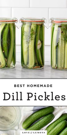 Learn how to make pickles at home! This easy dill pickle recipe requires 8 ingredients and 5 minutes to make, and the pickles are SO much better than store bought. Tangy, sweet, sour, and crisp, they're a delicious snack or sandwich topping. | Love and Lemons #pickles #howto #healthyrecipes #healthysnacks Easy Dill Pickle Recipe, Homemade Dill Pickles, Home Made Pickles Recipe, Yummy Snacks, Healthy Snacks, How To Make Pickles, Vegetarian Recipes, Healthy Recipes, Delicious Recipes