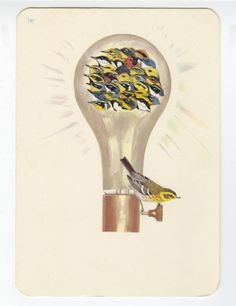 Lots of bright ideas.   Limited edition print by viviennestrauss, $30.00