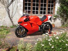 Ducati Desmosedici Rr, Puerto Rico History, Ducati Motorcycles, Sportbikes, Custom Bikes, Motogp, Cool Bikes, Motorbikes, Vehicles