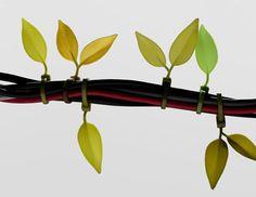 葉っぱのような結束バンド。Leaf Tie - まとめのインテリア / デザイン雑貨とインテリアのまとめ。