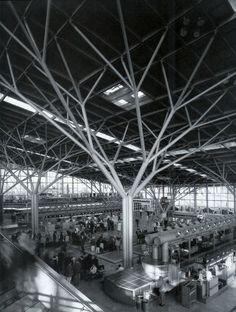 樹木 構造 建築¥ - Google 検索