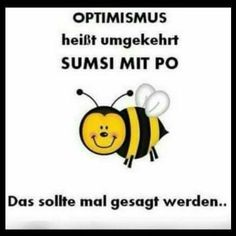 Optimismus - New Ideas Men Quotes, Funny Quotes, Just Smile, Just Kidding, Funny Wallpapers, Funny Kids, Decir No, Funny Pictures, Hilarious
