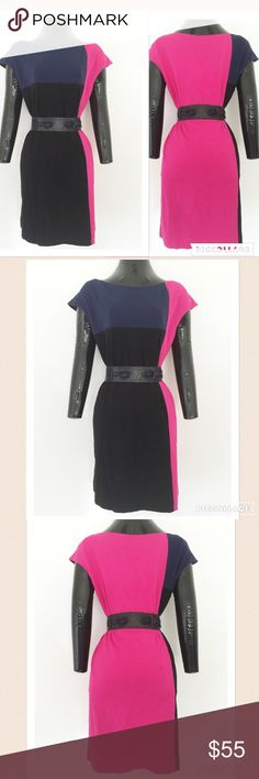 """Cynthia Steffe • $275 NWT Color Block Shift Dress Beautiful Cynthia Steffe mod-style shift dress that is brand new with tags.  The placement of the color blocking on this dress makes it so flattering & eye-catching.  It's perfect for work & day to night events.  It can be worn belted or as is.  Fully lined in black w/ slit side pockets.  65% viscose, 32% nylon, 3% spandex. *Belt is for styling ideas & not included Bust: 38-40"""", Length: 35"""".  Fabric is medium weight & perfect for flattering…"""