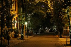 Addison Street, Philadelphia, PA one of the most beautiful streets...great reason to move to Philadelphia