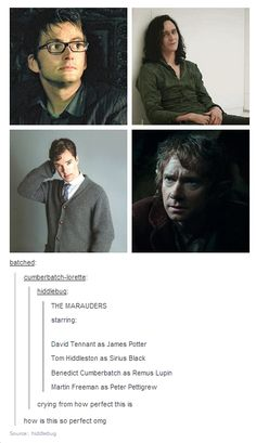 But I LIKE Martin Freeman!! -Sigh- I cannot, however, deny the awesomeness that is this casting of the Marauders!