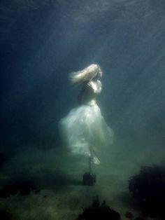 Underwater photography Mark Mawson