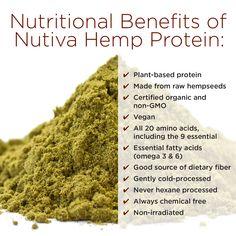 Nutiva Hemp Protein Benefits. Things You've Always Wondered About Hemp, But Were Too Afraid To Ask_kitchen.nutiva.com.jpg