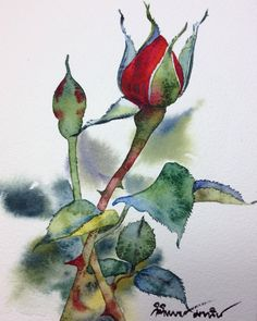 40 Very Easy Watercolor Painting Ideas For Beginners Watercolor Cards, Watercolor And Ink, Watercolor Flowers, Watercolor Paintings, Watercolors, Art Floral, Beginner Painting, Botanical Art, Painting Inspiration