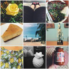 BLOG POST instagram roundup
