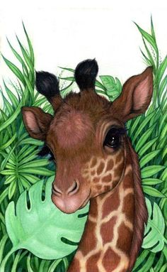 Robin james cutesy в 2019 г. animal drawings, giraffe art и Giraffe Drawing, Giraffe Painting, Giraffe Art, Cute Giraffe, Baby Giraffes, Giraffe Pictures, Animal Pictures, Cute Pictures, Animals And Pets