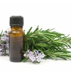Herbal Remedies For Snoring - Treatments & Cure For Snoring | Home Remedies, Natural Remedy