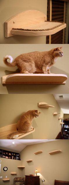 mountain cat climbers for cats free shipping pet360 pet parenting simplified cat jungle gymcat - Cat Jungle Gym