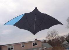 Will Sturdy Chiroptera!!! awesome extra ultra light wind single line gliding kite