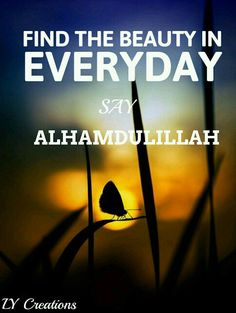Find the beauty in everyday