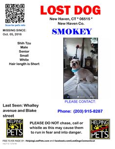 Close  Make Profile Picture for PageTag PhotoOptionsBoost PostShareLike Like Love Haha Wow Sad Angry Timeline Photos  Lost Dogs Connecticut Published by Jessica Goddard Like This Page · 4 hrs ·    Lost Dog - New Haven, CT - Shih Tzu - Oct.05, 2016 Closest Intersection: Whalley avenue and Blake street County: New Haven  #LOSTDOG #Smokey #NewHaven (Whalley avenue & Blake street) #CT 06515 #NewHaven Co. , #Lost #Dog 10-05-2016!, Male #Shih Tzu White/Not wearing any collars. Extremely…
