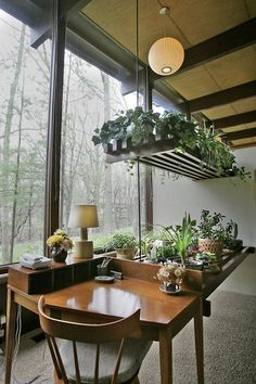 Inside garden next to window. What a lovely idea to put facing your desk/workspace! Much better than facing the wall!