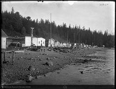 La Rive, Natural History, British Columbia, Canada, San, Digital, Nature, Outdoor, North West