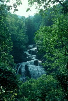photo of a waterfall in North Carolina by davidMhunt via Flickr, posted by Michelle Nicole (*~Biologist Barbie~*)