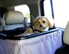 How To Make A Homemade Dog Booster Car Seat