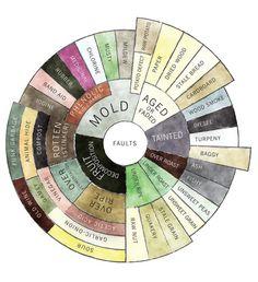The Counter Culture Coffee Taster's Flavor Wheel (faults descriptors)