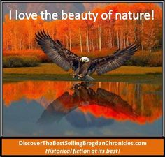 Awesome looking! Look at the wing span of this beautiful Eagle! Beautiful Birds, Beautiful World, Animals Beautiful, Beautiful Pictures, Stunningly Beautiful, All Birds, Birds Of Prey, Tier Fotos, Fall Pictures