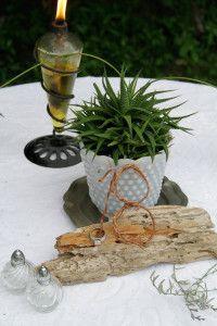 Table decoration with cactus centerpiece Gallery | C.Curiosity