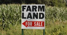 Government has finally admitted that the Valuer-General undervalued land belonging to 20 farmers by almost half of their worth. Department Of Lands, City Press, Land For Sale, Farmers, Landing, How Are You Feeling, Text Posts