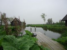 De sloten van deze polder lopen tot op het erf en op verzoek van de bewoners heeft Groenpartners een natuurlijk zwembad gerealiseerd in één van deze sloten. Compost, Composters