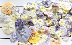 white, yellow, pink and purple crystallised flowers Victorian Crystallized Flowers How-To