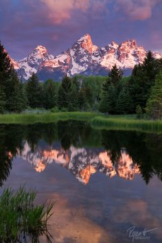 at Schwabacher Landing Sunrise at Schwabacher Landing, Grand Teton National Park, Wyoming.Sunrise at Schwabacher Landing, Grand Teton National Park, Wyoming. Grand Teton National Park, National Parks, Beautiful World, Beautiful Places, Beautiful Scenery, Amazing Places, Parcs, Amazing Nature, Belle Photo