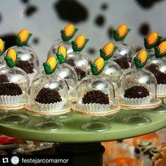 #Repost @festejarcomamor with @repostapp. ・・・ Olha que amor essas mini cúpulas…