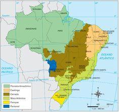 Mapa dos biomas brasileiros