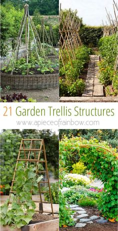 21 Easy DIY Garden Trellis Ideas & Vertical Growing Structures - Create enchanting garden spaces with 21 beautiful and DIY friendly trellis and garden structures, such as tunnels, teepees, pergolas, screens and more! – A Piece Of Rainbow - Small Gardens, Outdoor Gardens, Diy Jardim, Diy Trellis, Trellis Ideas, Bean Trellis, Bamboo Trellis, Tomato Trellis, Trellis Design