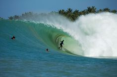 All eyes on Indo as the Indian Ocean's swell of the year sends freight-train barrels to Nias. Anthony Walsh goes for broke and come back rich. Photo: Frieden