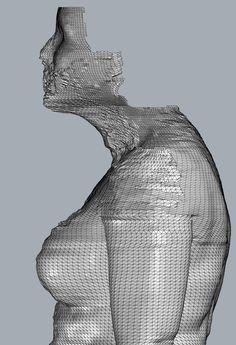 Lara Torres Body Scan 2013