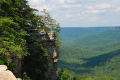 Image result for Collins Gulf, South Cumberland State Park, TN