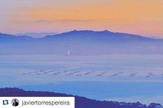 Días de #invierno ❄ con con amaneceres  de #verano  #SienteGalicia Fotografía  de @javiertorrespereira  ・・・ #vigo #pontevedra #galicia #galiciavisual #loves_galicia #galigrafias #visitspain