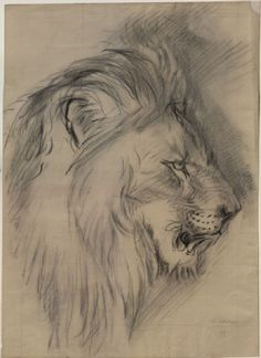 Burgess, Arthur - Enlarged Drawing of John Ruskin's