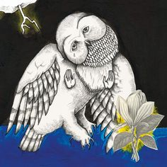 "Exile SH Magazine: Songs: Ohia - ""Magnolia Electric Co."" (2003) http://www.exileshmagazine.com/2014/03/songs-ohia-magnolia-electric-co-2003.html"