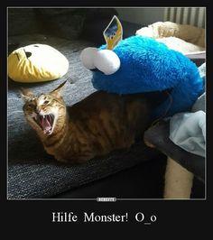 Hilfe Monster! O_o | Lustige Bilder, Sprüche, Witze, echt lustig