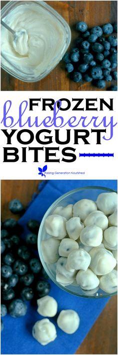 Frozen Blueberry Yogurt Bites :: Quick, sweet little yogurt covered blueberry…