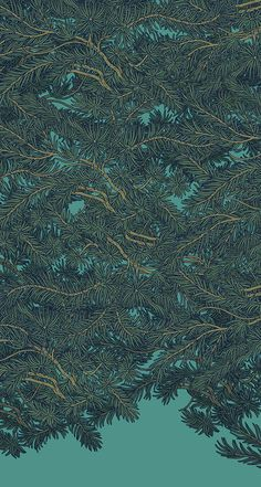 TATSUSHI  ETO, Cedar Pattern.