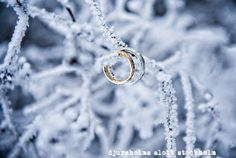 Winter wedding ring pictures