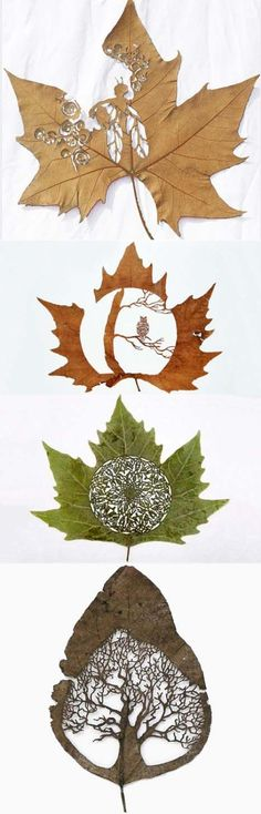 DIY Leaf Art
