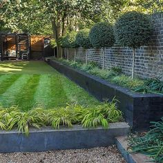 Family garden design in Wandsworth, designed by Philip Wells, Design Box Architecture and constructed by The Garden Builders Back Garden Design, Backyard Garden Design, Contemporary Garden Design, Landscape Design, Garden Modern, Back Gardens, Outdoor Gardens, Small Gardens, Back Garden Landscaping