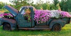 pick up flower garden